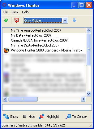 Click to view Windows Hunter 2008 Standard 1.0.0.8 screenshot